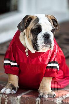 He's a Georgia Bulldog.