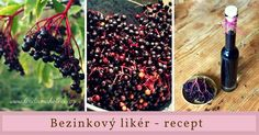Bezinkový likér po babičce mé kamarádky.  Připravte si na podzim nějakou lahodnou dobrotu. Blackberry, Food And Drink, Fruit, Blackberries, Rich Brunette