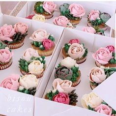 All Time Easy Cake : Cute Bridal Shower Desserts Wedding Cupcakes Ideas, Bridal Shower Desserts, Wedding Desserts, Wedding Cupcakes, Bridal Shower Cupcakes, Cupcakes Flores, Flower Cupcakes, Rose Cupcake, Pink Cupcakes, Valentine Cupcakes