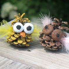These cute little owls are easy to make and fun to display!