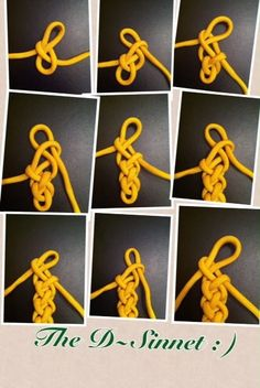 Paracord pictorial