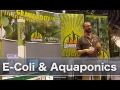 E-Coli and Aquaponics - Is there risk of E-Coli in Aquaponic farming? - Bright Agrotech - YouTube