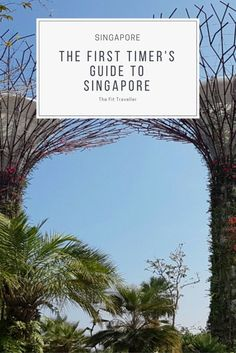 First Timer's Guide to Singapore | Planning the Perfect Singapore Getaway. Singapore is a destination with so much to offer visitors. This guide for first timer's has everything you need to plan the perfect Singapore getaway. ***** What to do in Singapore | Singapore Getaway | Things to do in Singapore | Singapore Must-See | Where to Eat in Singapore | Singapore Attractions | Singapore Travel Guide | Free Activities Singapore |