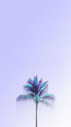 Mint palm wallpaper for your phone, cool wallpaper, mint wallpaper, apple watch wallpaper Wallpapers Purple, Mint Wallpaper, Dope Wallpapers, Summer Wallpaper, Cool Wallpaper, Aesthetic Wallpapers, Beautiful Wallpaper, Iphone Wallpapers, Phone Backgrounds