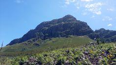 Helderberg Mountain, Helderberg Nature Reserve (Photo David Floyd) Somerset West, Nature Reserve, South Africa, Westerns, Cape, David, Mountains, Travel, Outdoor