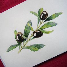 Olive branch on Behance                                                       …