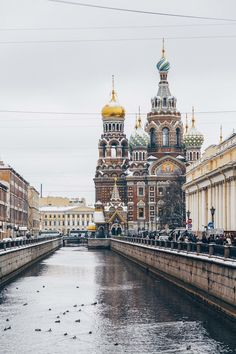 St. Petersburg vacation photographer