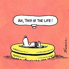 Peanuts: Snoopy in the summer Peanuts Cartoon, Peanuts Snoopy, Charles M. Schulz, Snoopy Comics, Snoopy Wallpaper, Snoopy Pictures, Snoopy Quotes, Snoopy Christmas, Christmas Carol