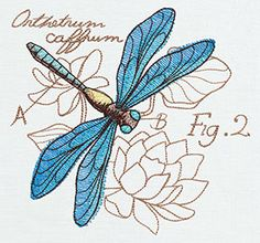 Miniature Menagerie Dragonfly Diagram design (UT6522) from UrbanThreads.com
