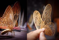 Incredibly Lifelike Insects Crafted out of Bamboo by Noriyuki Saitoh | Colossal Insect Crafts, Insect Art, Grandeur Nature, Bamboo Art, Colossal Art, Small Sculptures, 3d Drawings, Drawing Skills, Drawing Tips
