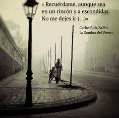 «Recuérdame, aunque sea en un rincón y a escondidas. No me dejes ir (...) » Carlos Ruiz Zafón - La Sombra del Viento