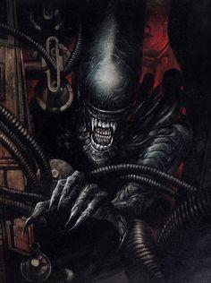 Сохранённые фотографии – 7 741 фотография Alien Vs Predator, Predator Movie, Predator Alien, Alien Film, Alien Art, Alien 1979, King Kong, Giger Alien, Giger Art