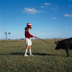 http://alessandrasanguinetti.com/files/gimgs/th-8_09_enchanting the pig_1999.jpg