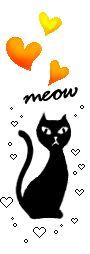007yc06p Gato Gif, Gifs, Cute Kittens, Diy Dog, Presents