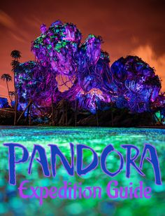 Pandora - World of Avatar is now open in Animal Kingdom at Walt Disney World. This guide will offer tips and time-saving strategy for efficiently experienc Disney World Parks, Disney World Planning, Walt Disney World Vacations, Pandora Disney World, Avatar Disney World, Disney World Tips And Tricks, Disney Tips, Disney Love, Disney 2017