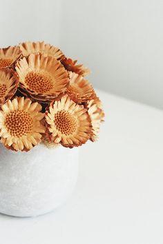 Protea mound - dried flower arrangement floresdelsol, Etsy