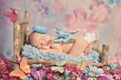 Inspiration For New Born Baby Photography : Cleveland Newborn Photographer Katherine Chambers Photography Cleveland Baby p