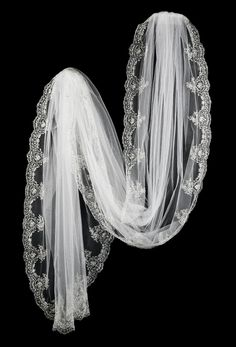 Cathedral Bridal Veil with Elegant Silver Embroidery and Beads