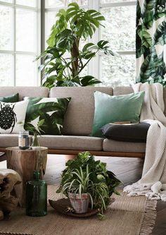Schluss mit Fernweh! Hier gibt's die besten Wohnaccessoires für ein Leben wie im tropischen Dschungel.