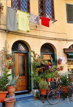 Lucca, Italy...medieval walled town close to pisa and florence and the port of livorno