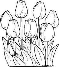 Image result for legszebb virag rajzok