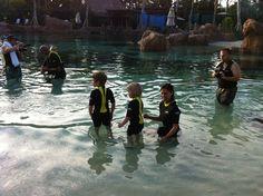 10 tips to enjoy Aquatica San Antonio from blogger @Jennifer Patrick