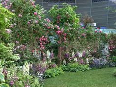 蓼科高原「バラクライングリッシュガーデン」が出展中の庭。この庭を見たら蓼科高原の庭園を見たいと思いました。四季折々の花が植えてあるそうですが、バラが咲く6月中旬が一番素晴らしいそうです。*BARAKURAイングリッシュガーデン*