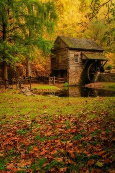 Luv Fall Season