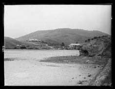 Portobello, Dunedin, New Zealand. My great-great-grandfather settled here in the My children are the generation to live on this land. Portobello, New Zealand, Author, Beach, Places, Water, Museum, Collections, Image
