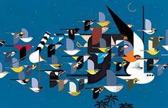 Migratory Bird Identification Challenge: Name These 45 Species | Audubon