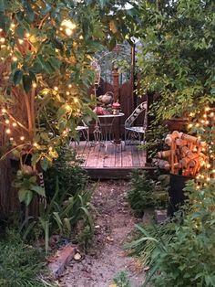 Ginny's Enchanted  Garden at night.