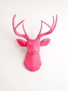 I have no clue why... but I really really want this deer head... it might happen... :) Faux Deer Mount - The Alejandra - Pink Resin Deer Head- Stag Resin Pink Faux Taxidermy- Chic & Trendy