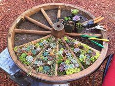 Wagon Wheel Design Herb Garden Is An Easy DIY