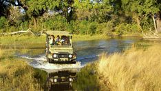 Premier Africa travel tour operator specializing in luxury and mid-range custom tours and safaris. Trips to South Africa, Tanzania, Kenya, and more. Kruger National Park Safari, Chobe National Park, Audley Travel, Tanzania Safari, Okavango Delta, Wildlife Safari, Adventure Tours, Tour Operator, Travel Tours
