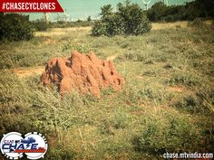 #Cyclones - Anthill #ChaseCyclones #ChaseTheMonsoon