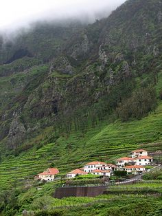 Madeira Island - Mountain Fields by Walter Q's, via Flickr