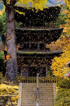 長野 前山寺三重塔
