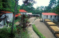 Hacienda Buena Vista, Ponce, PR | PhotosPR.com