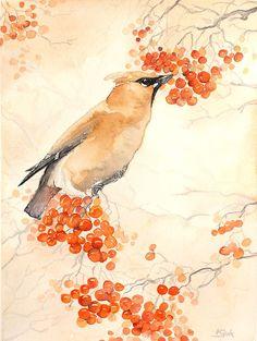 A beleza e graça dos pássaros nas pinturas de Karolina Kijak