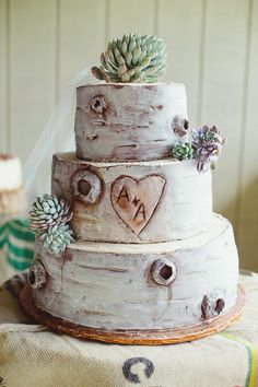 Birch wood, initials carved, succulent wedding cake
