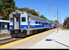 tiger train station surprises - HD1100×786