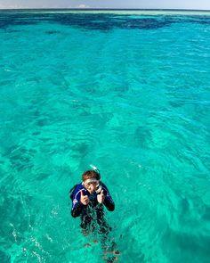 Snorkeling on the Mackay reef in Queensland is always two tumbs up! Faire de l'apnée sur le récif Mackay au Queensland est toujours top! #australia #snorkeling #sea #queensland #picoftheday #tpotd16 #travel #sports #greatbarrierreef by danycoulombe_massawfoto http://ift.tt/1UokkV2