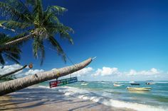 Luxury Adventure: Welcome to Sri Lanka! Outdoor Furniture, Outdoor Decor, Welcome, Sri Lanka, Entertaining, Island, Adventure, World, Beach
