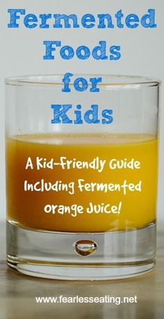 Fermented Foods For Kids: A New Guide with Kid-Friendly Recipes If you need more kid-friendly fermented foods ideas, check out this new home fermentation guide that includes lots of fermented foods for kids. Vegetarian Meals For Kids, Kids Cooking Recipes, Healthy Meals For Kids, Baby Food Recipes, Kids Meals, Whole Food Recipes, Jello Recipes, Kid Recipes, Whole30 Recipes