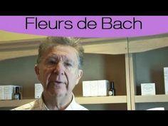 Fleurs de Bach : les plus connues et utilisées - YouTube