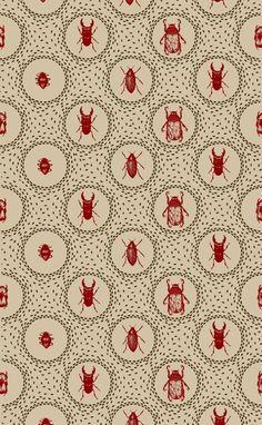 foxontherun:    (via Pattern / Beetle Pattern by Holly Trill)