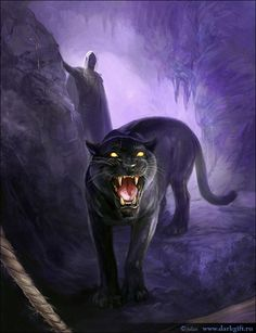 Perfect Image Detail For  Free Wallpapers   Black Panther And Elf Wallpaper Great Pictures