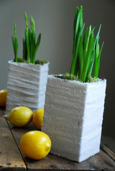 Milk cartons are cut down and wrapped in linen to serve as planters for a simple spring centerpiece.