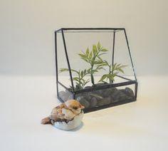 SALE, Glass Terrarium, Planter, Home Decor,Indoor Garden Art,Recycled Glass, Atrium, Conservatory, Greenhouse, Diorama Container, Garden Art