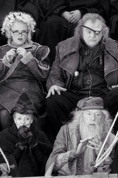 Harry Potter. Rita Kimmkorn, Albus Dumbledore, Minerva McGonagall and Alastor Moody